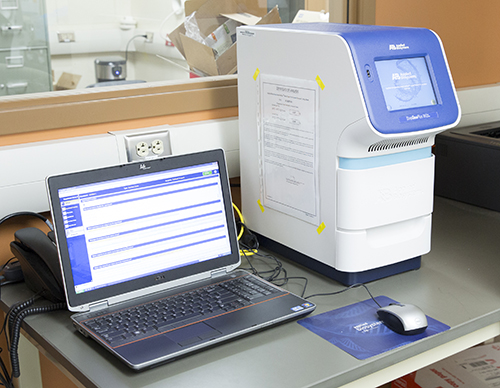StepOnePlus RT-PCR